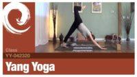 Yang Yoga • 04-23-20 - Vimeo thumbnail