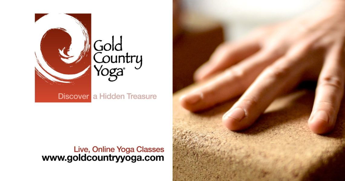 Behind the Scenes: Gold Country Yoga Online