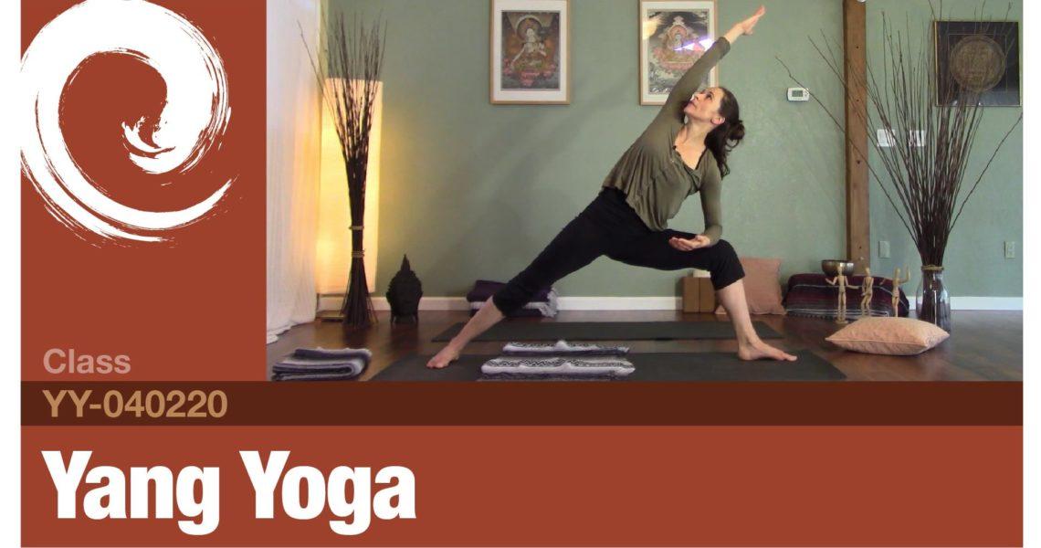 Yang Yoga • 4-2-20