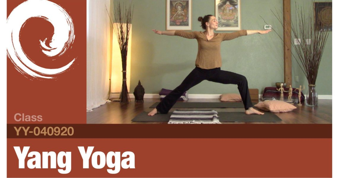 Yang Yoga • 4-9-20