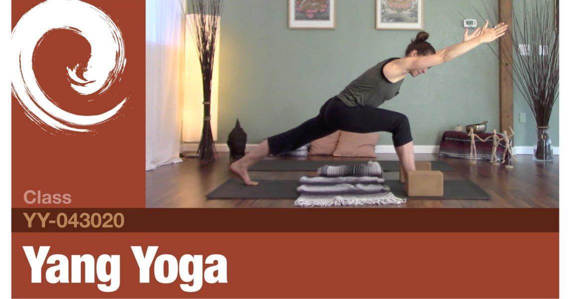 Back|Hips|Shoulders|Twists