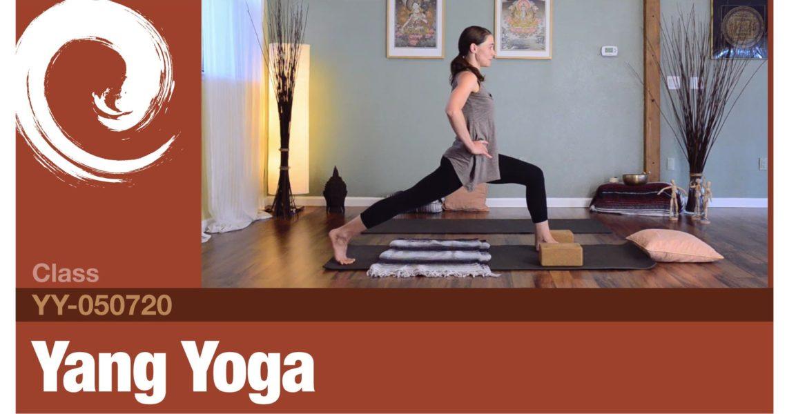 Yang Yoga • 05-07-20
