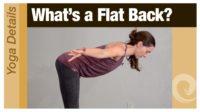 Yoga Details • What's a Flat Back? - Vimeo thumbnail