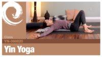 Yin Yoga • 06-06-20 - Vimeo thumbnail