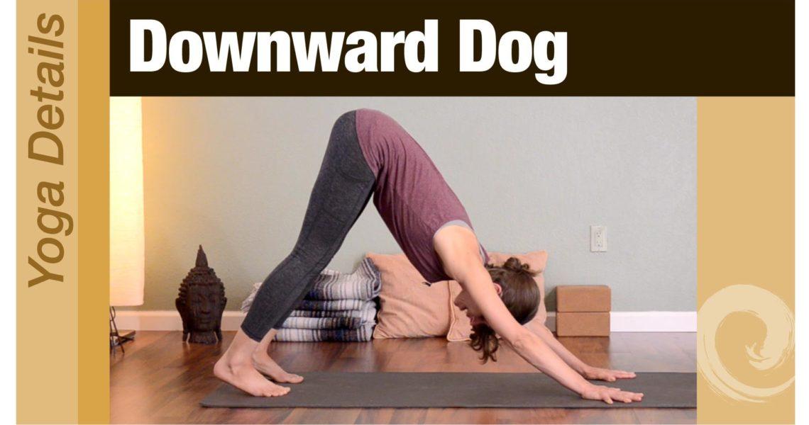 Yoga Details • Downward Dog