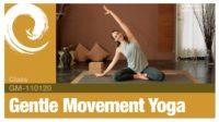 Gentle Movement Yoga • 110120 - Vimeo thumbnail