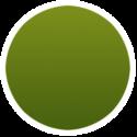 icon-bg-circle-greeny