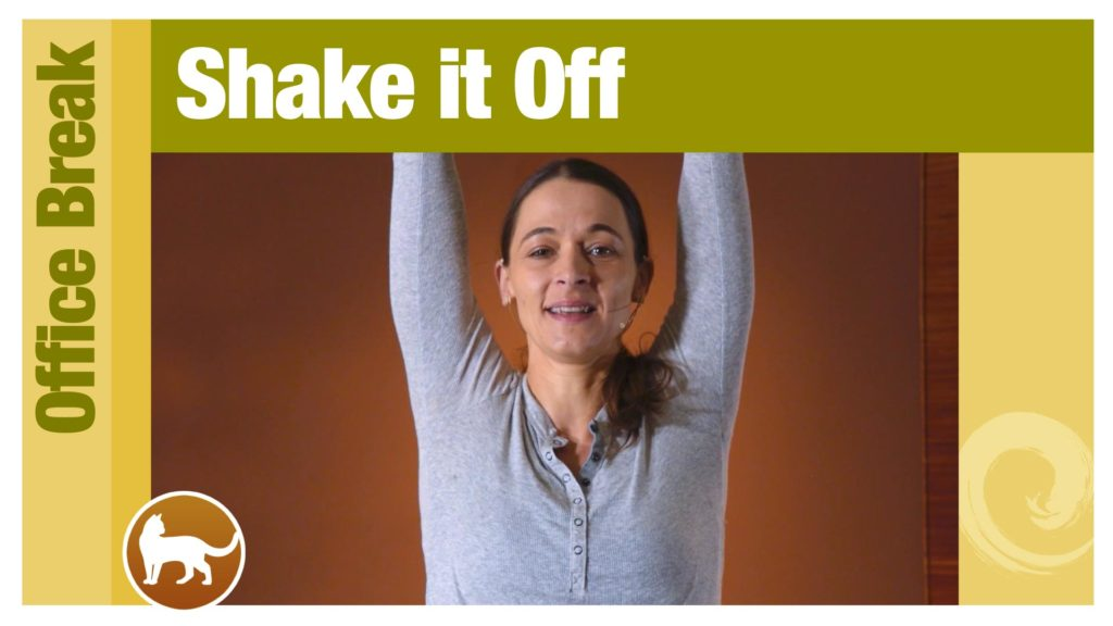 Office Break • Shake it Off