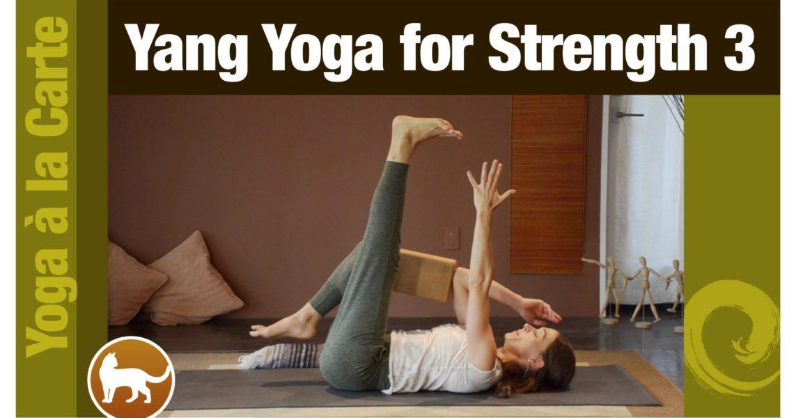 Yang Yoga for Strength 3