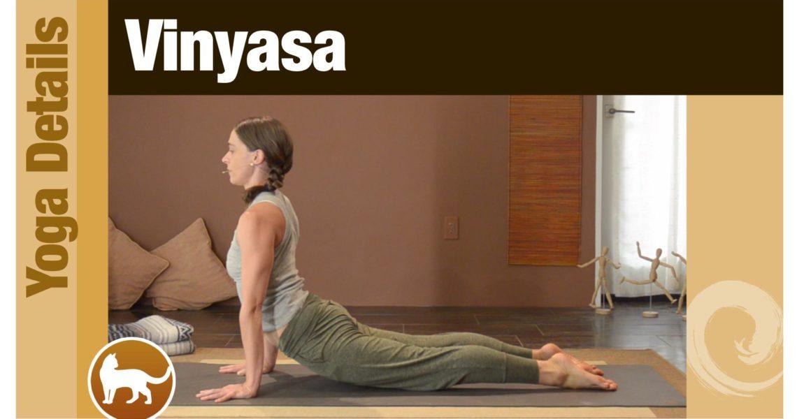 Yoga Details • Vinyasa