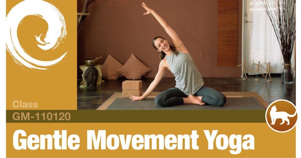 Gentle Movement Yoga • 11-01-20