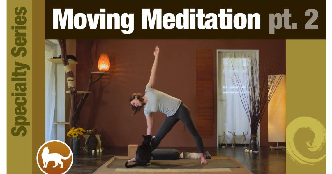 Series: Moving Meditation pt 2