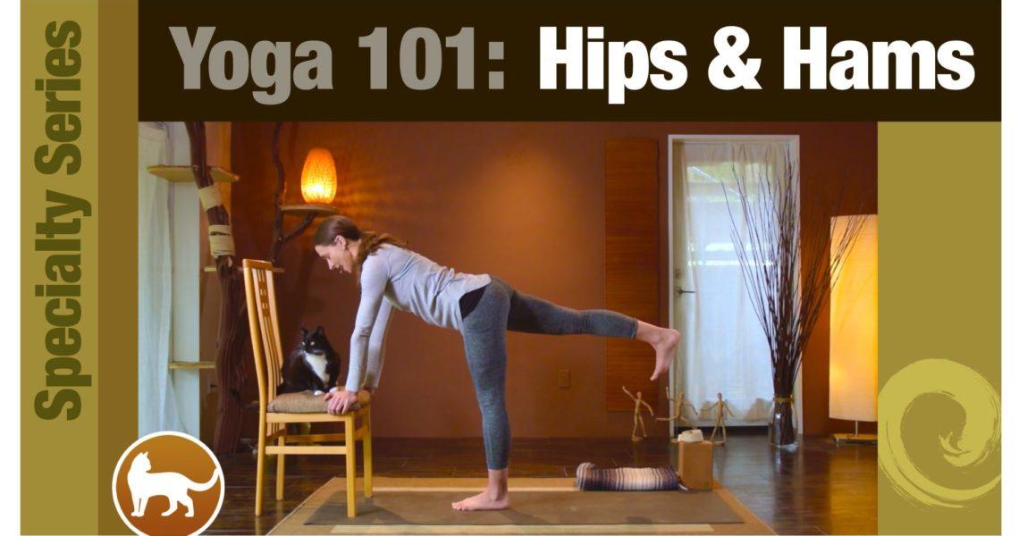 Yoga 101 • Hips & Hamstrings
