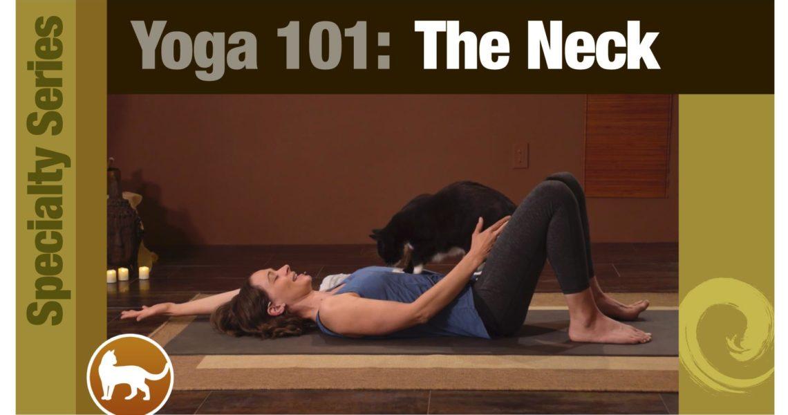 Yoga 101 • The Neck